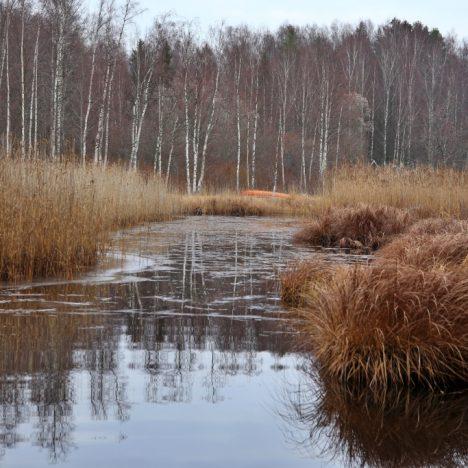 Valkmusan kansallispuisto – Läntisen keitaan lenkki
