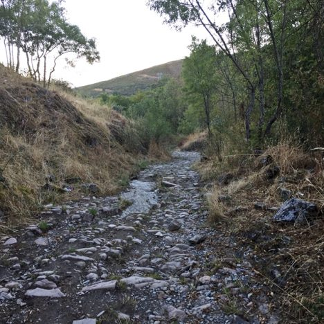 Camino de Santiago, päivä 4: Santa Catalina – El Acebo