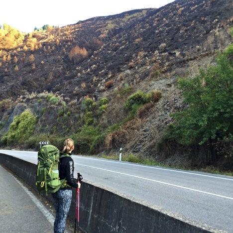 Camino de Santiago, päivä 6: Compostilla – Pereje