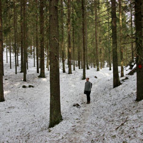 Talvinen Hossa on unohtumaton elämys